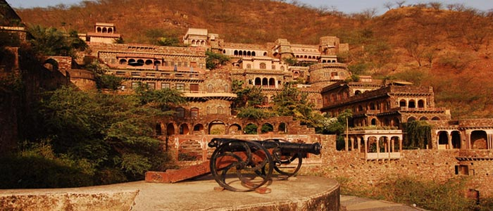 Neemrana Day Tour