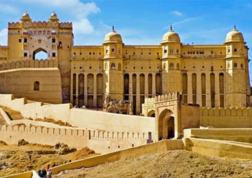 professional drivers in delhi for india tours